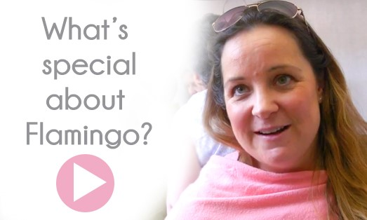 What's Special About Flamingo? - Popup Video